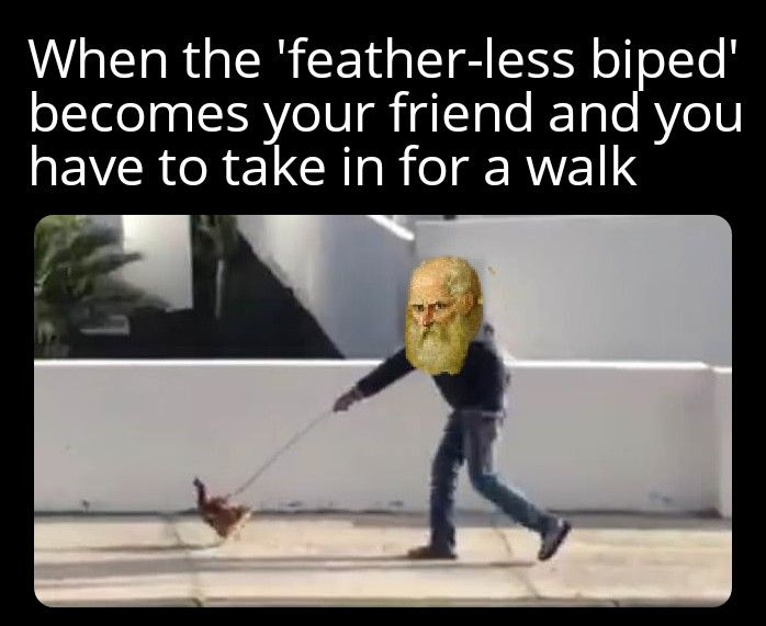 Diogenes: ''Featherless bi-ped my ass Plato!''