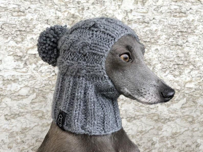 My dog a whippet hasn't been dealing well with the cold weather. I went looking for a jacket. Found this.