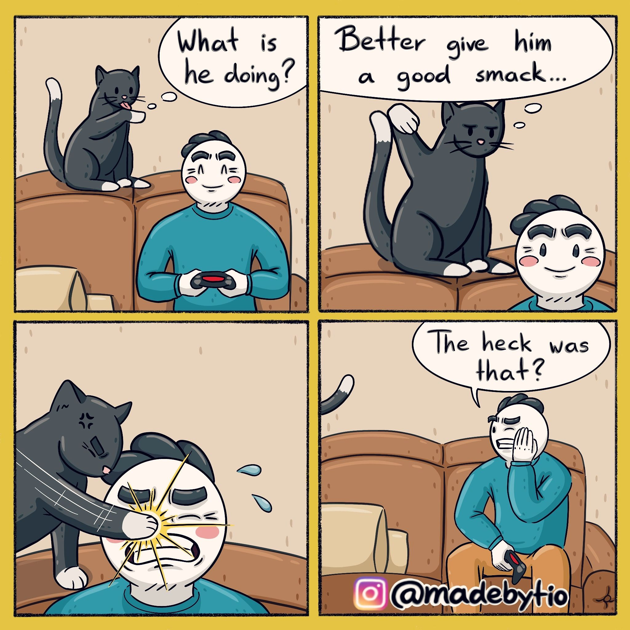 Cat: If in doubt, better smack