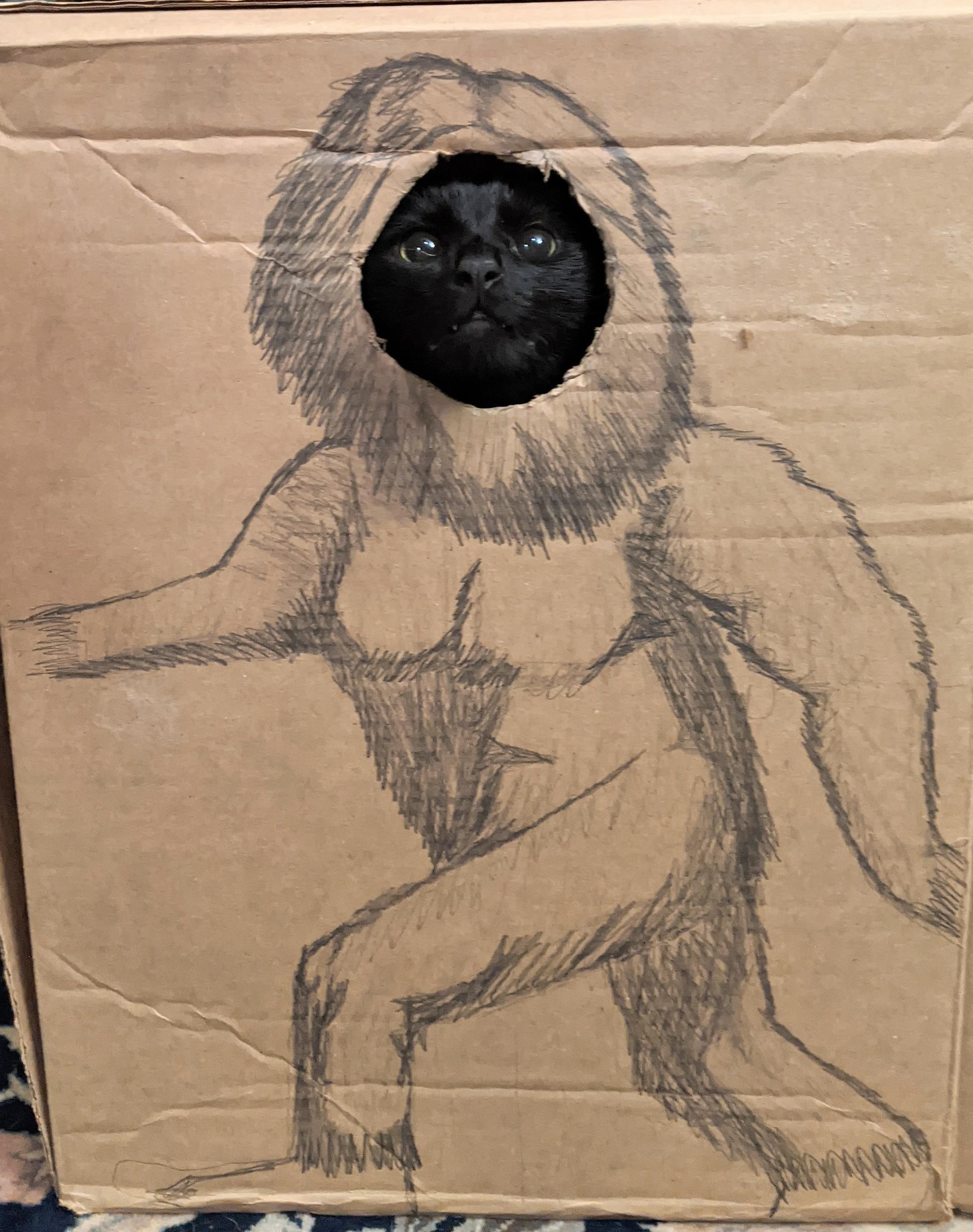 Catsquatch