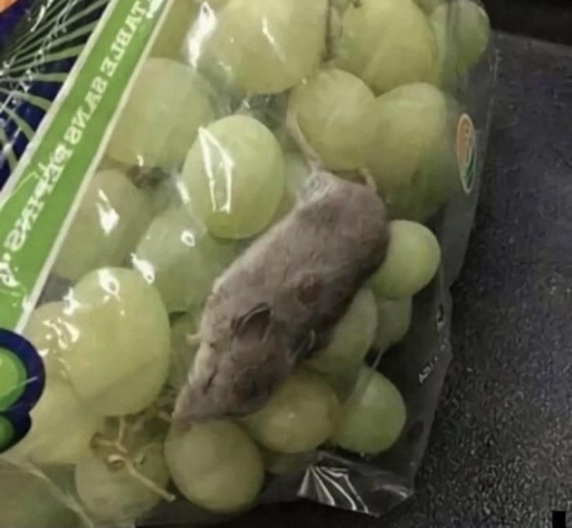 In Russia you get a fluffy toy with vine-grapes!