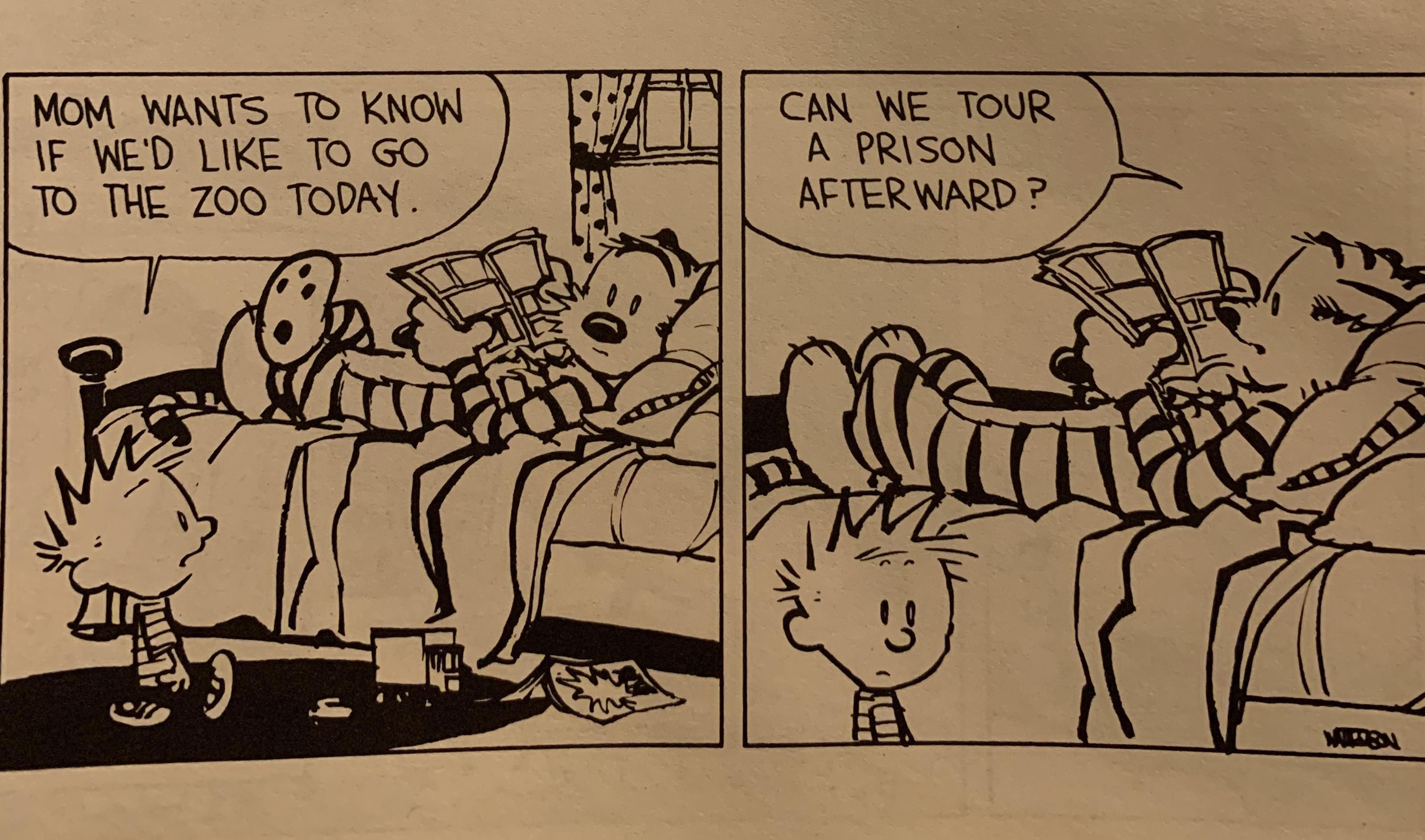 Calvin and Hobbes turns 35 today!