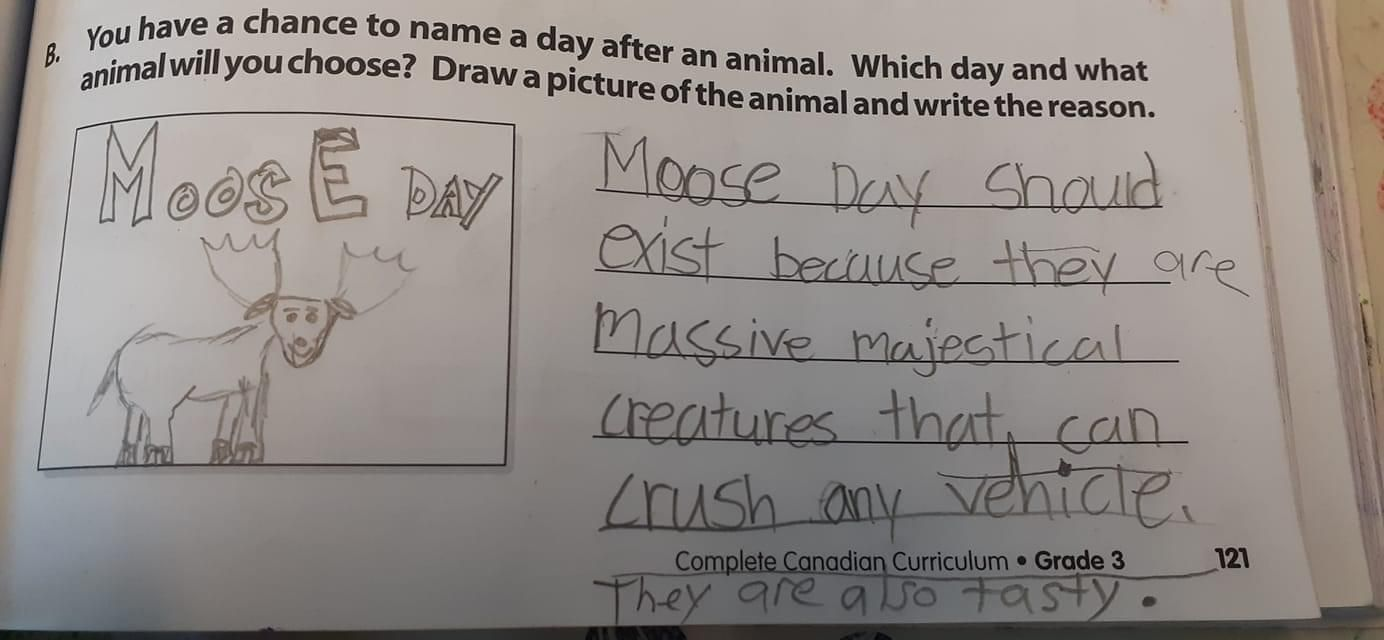 My Canadian friend's daughter's schoolwork. A+