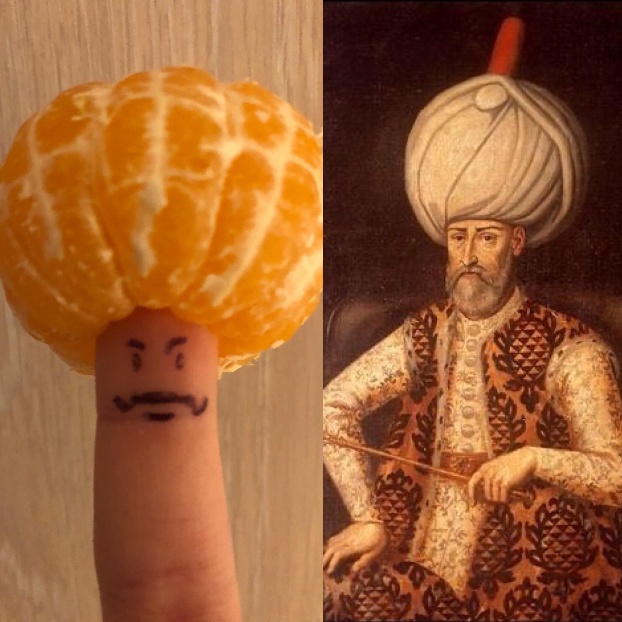 Accurate representation of Ottoman Sultan Suleyman 1