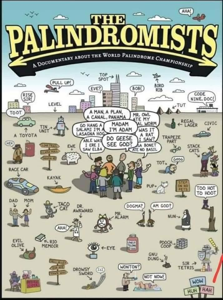 Palindromic world champs