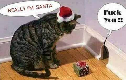 Hunting level: Christmas