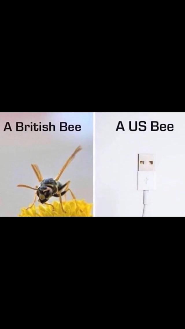 I mean, it's true.