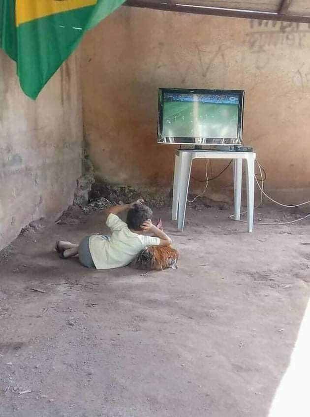 I do not want to know anything about the match or this place, I just want to know how he managed to make the chicken a pillow and persuade her to watch with him.