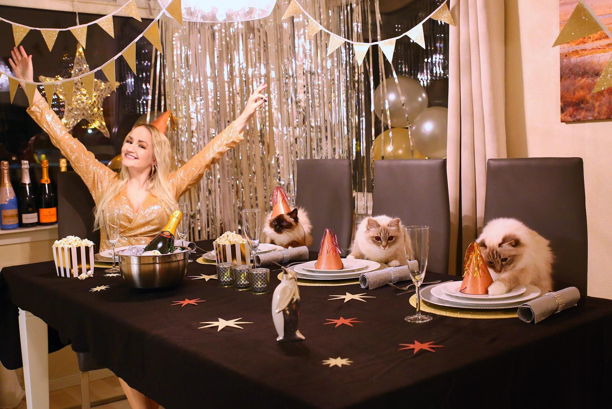 My CATastrophic New Year's party