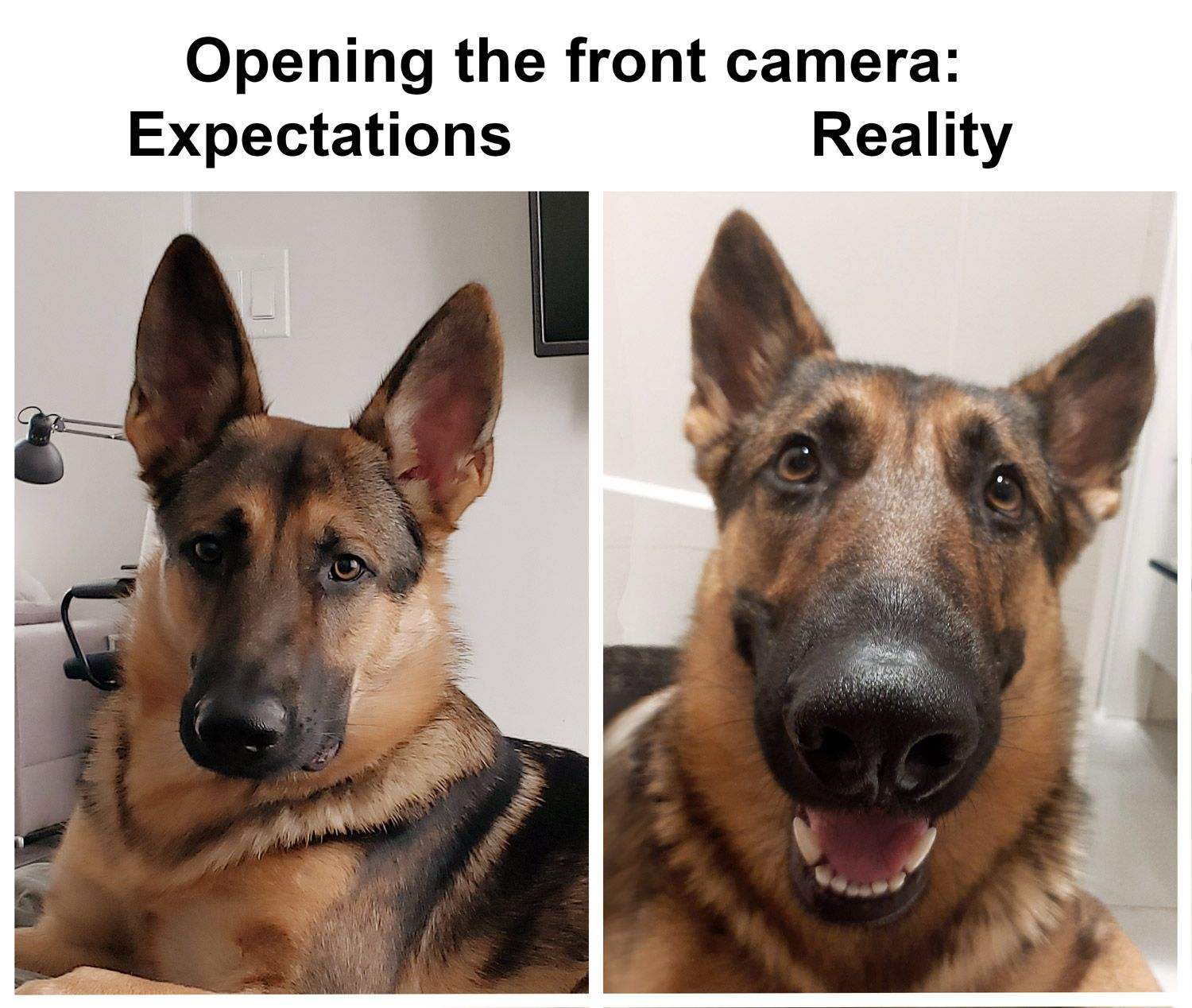 Opening the front camera: Expectations vs Reality