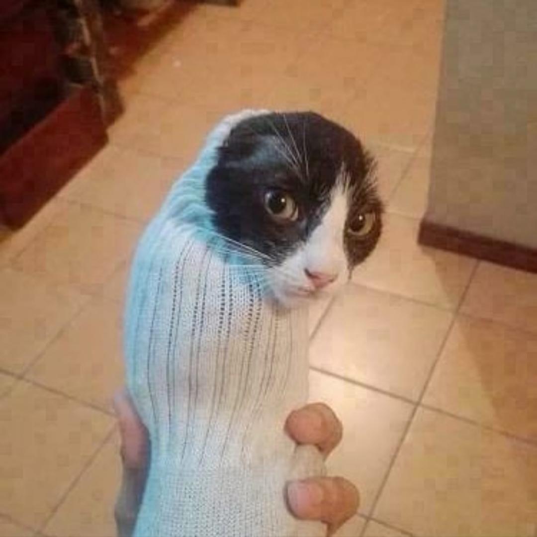 Da sock.