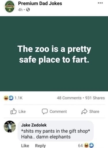 Lol elephants