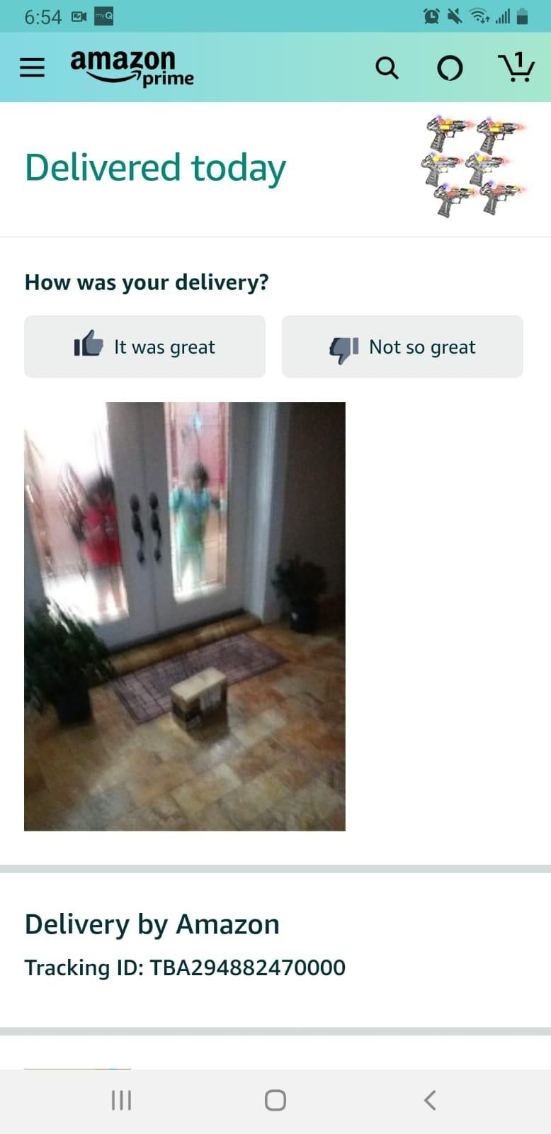 Amazon's delivery confirmation. My niece and nephew were waiting for their toy.