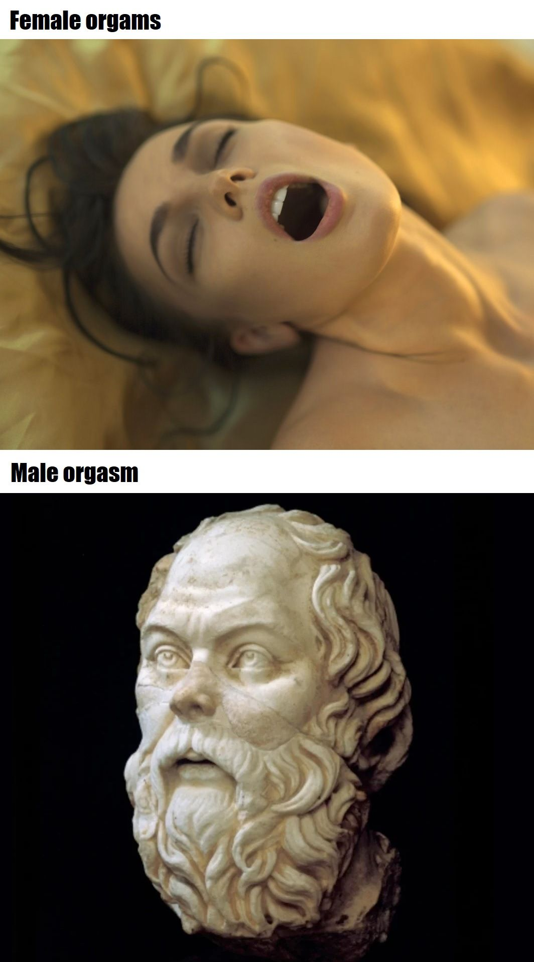 do the Socrates