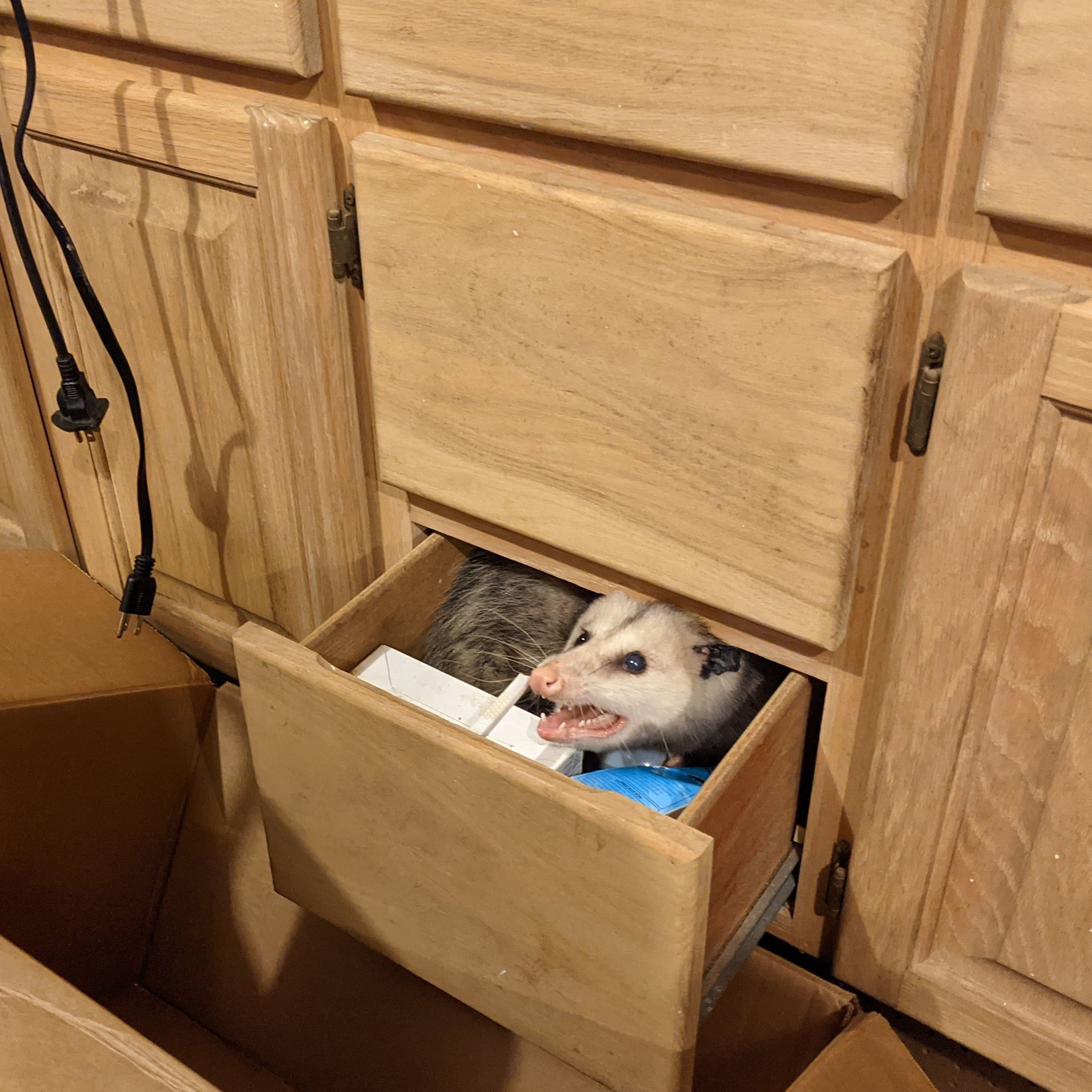 Guess this is her drawer now.