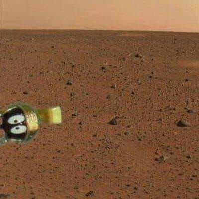 Here's the actual first picture from the Perseverance rover