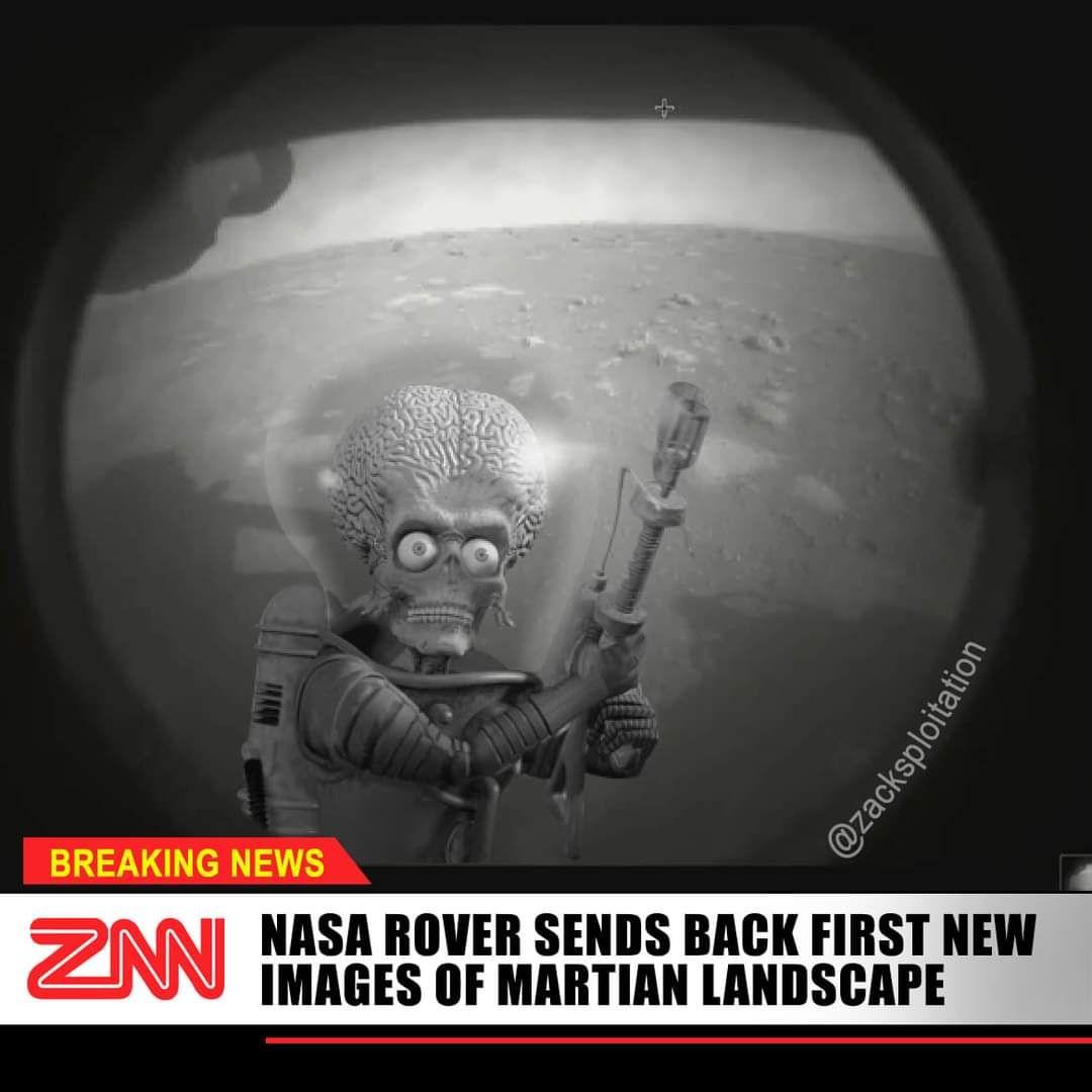 1st photos of life on Mars!