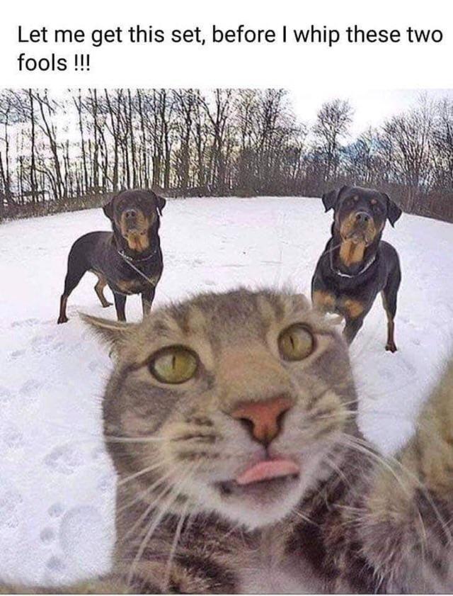 Selfie time...