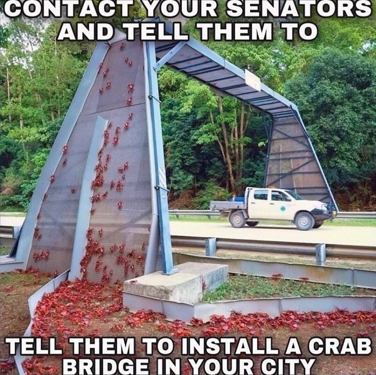 We must complete the crab cycle