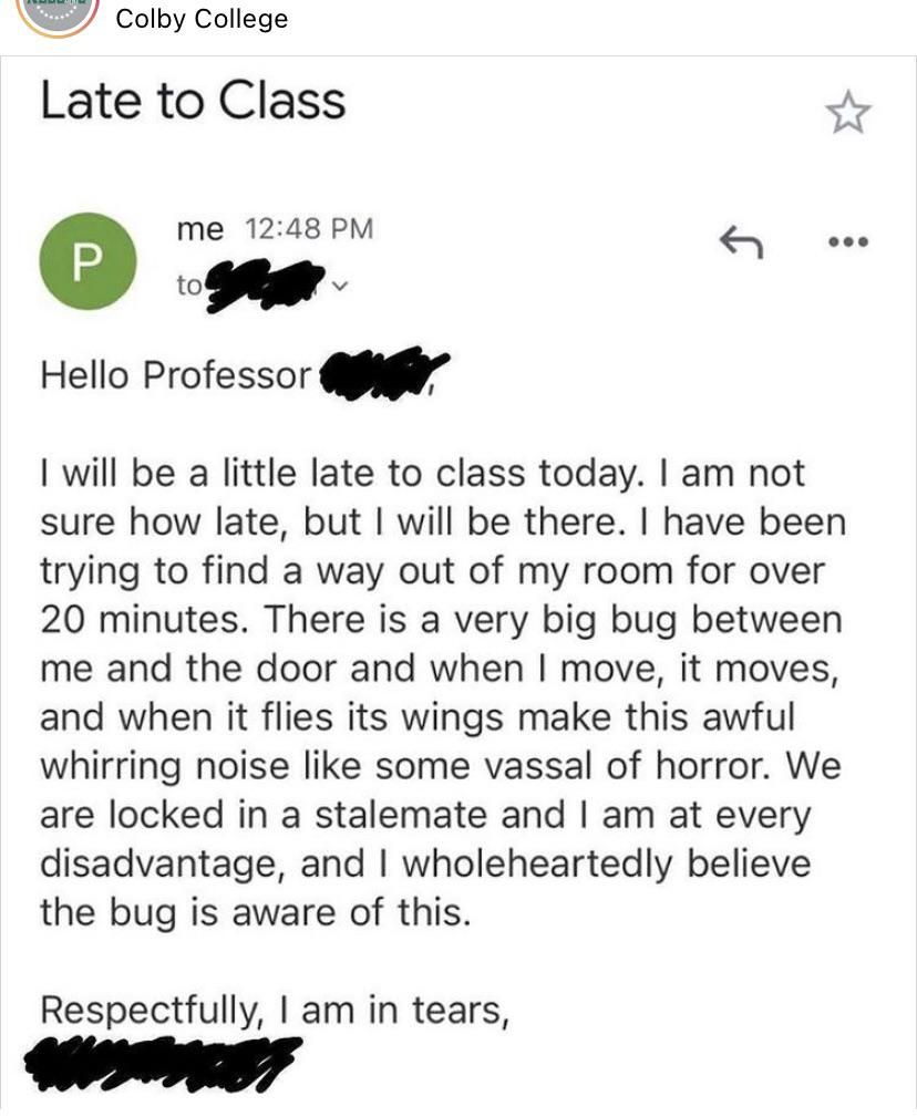 My friend sent this to her Professor today
