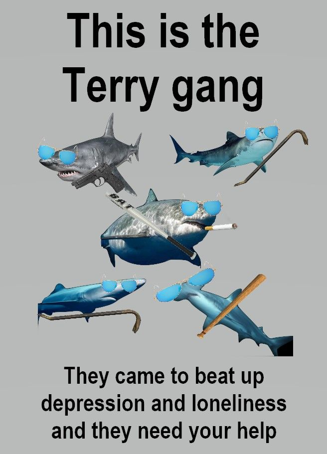 Thank you Terry gang, very cool