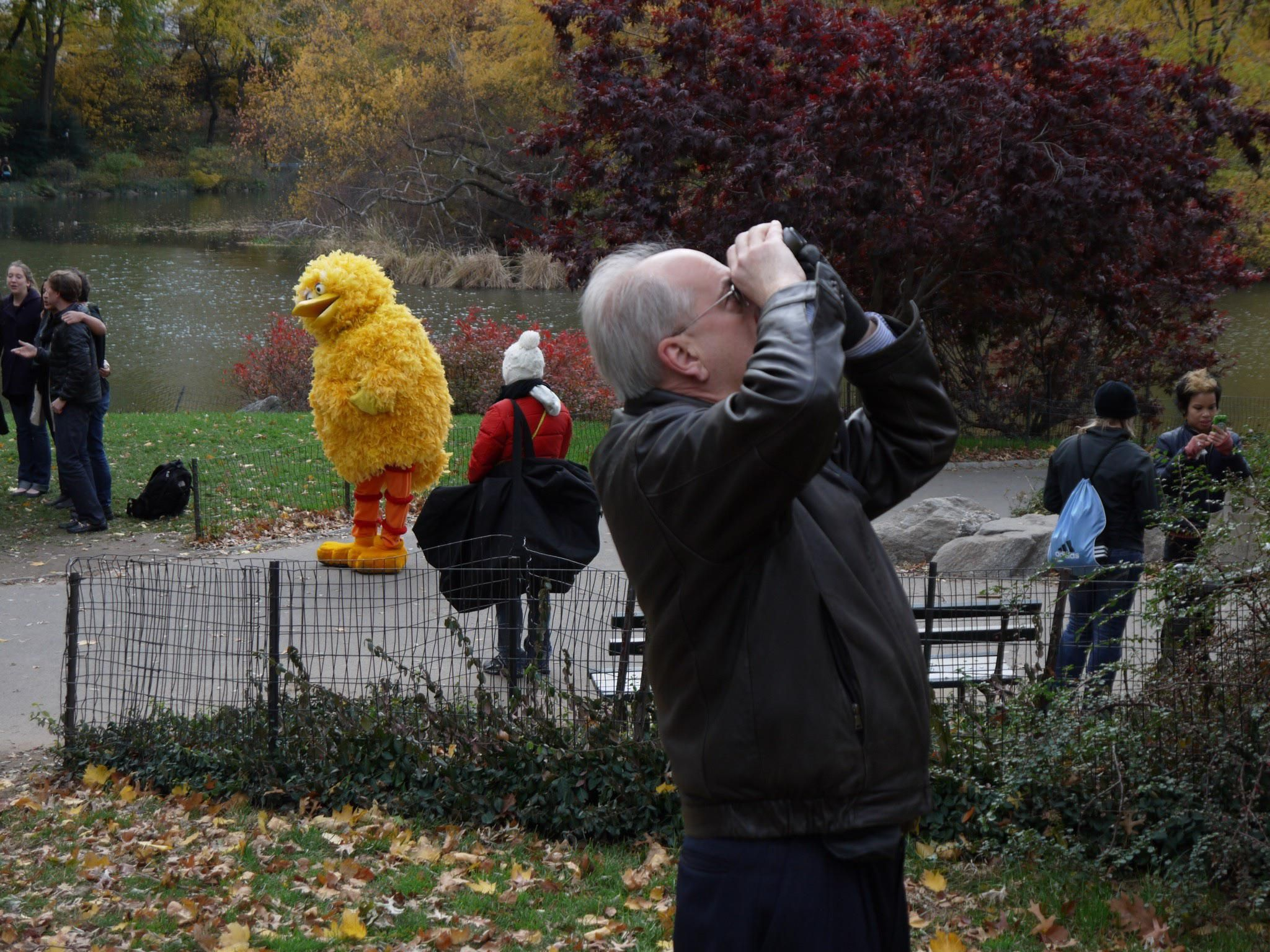 My father-in-law bird watching in Central Park.