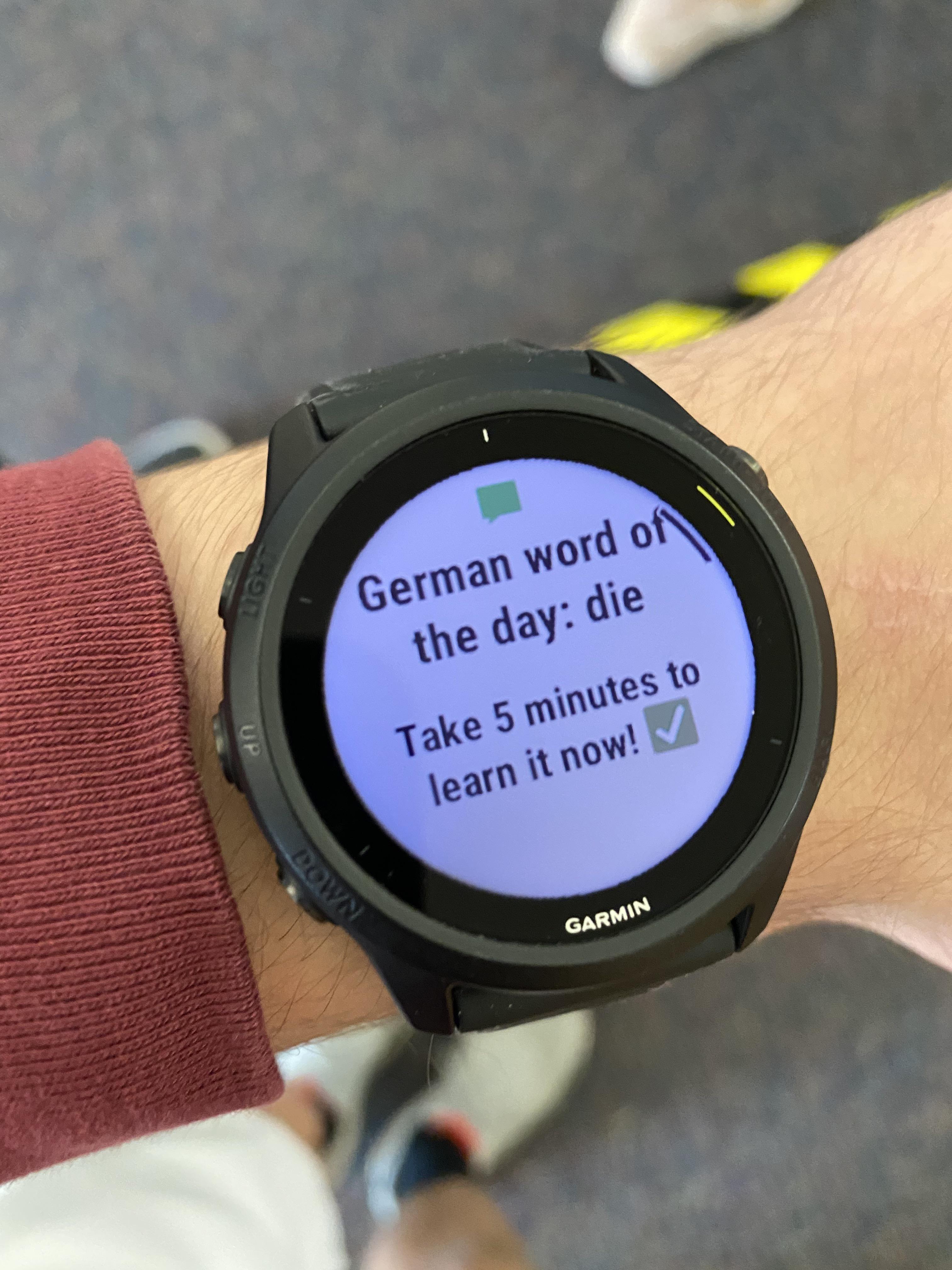 Bro even Duolingo wants me to die