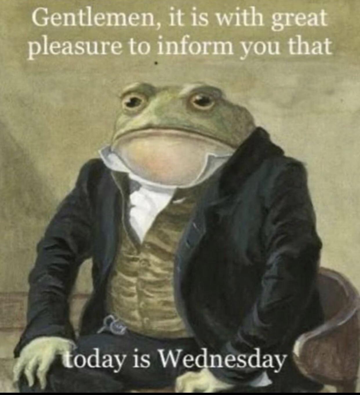 Froggy wedneday boyz