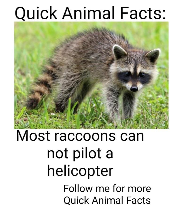 Quick Animal Fact #7