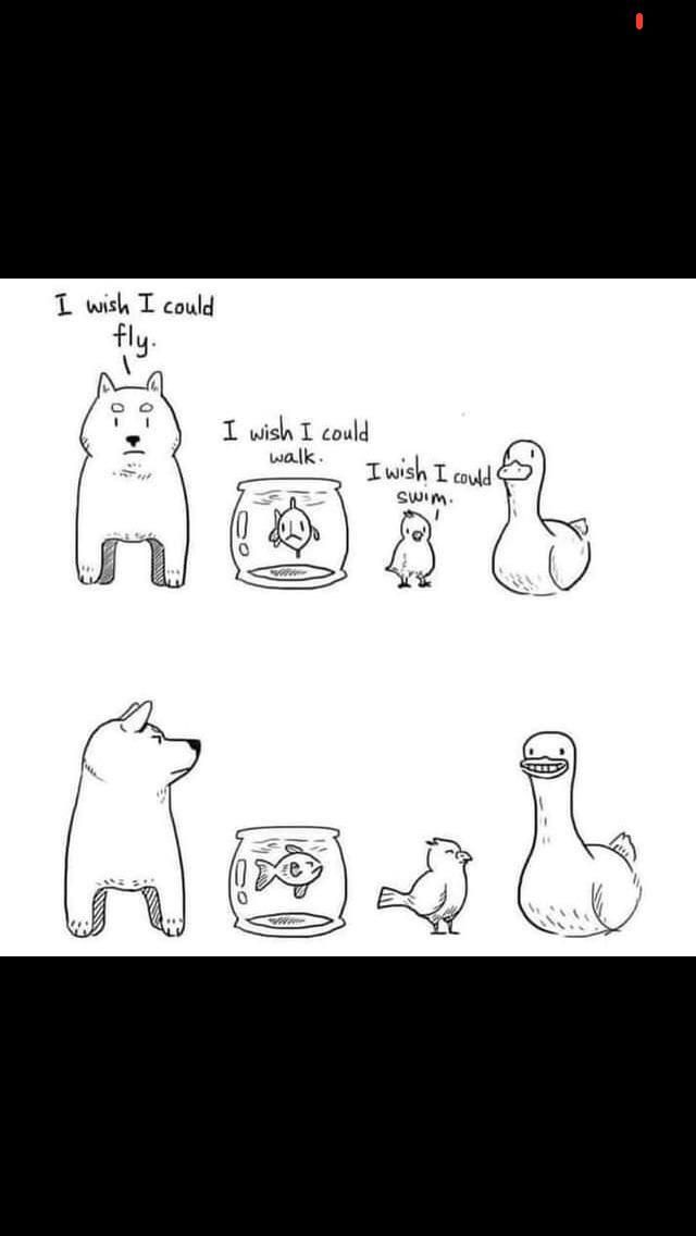 Duck's ability