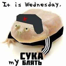 It is Wednesday comrads