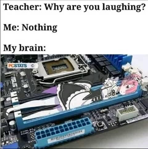 Brain.exe stopped working