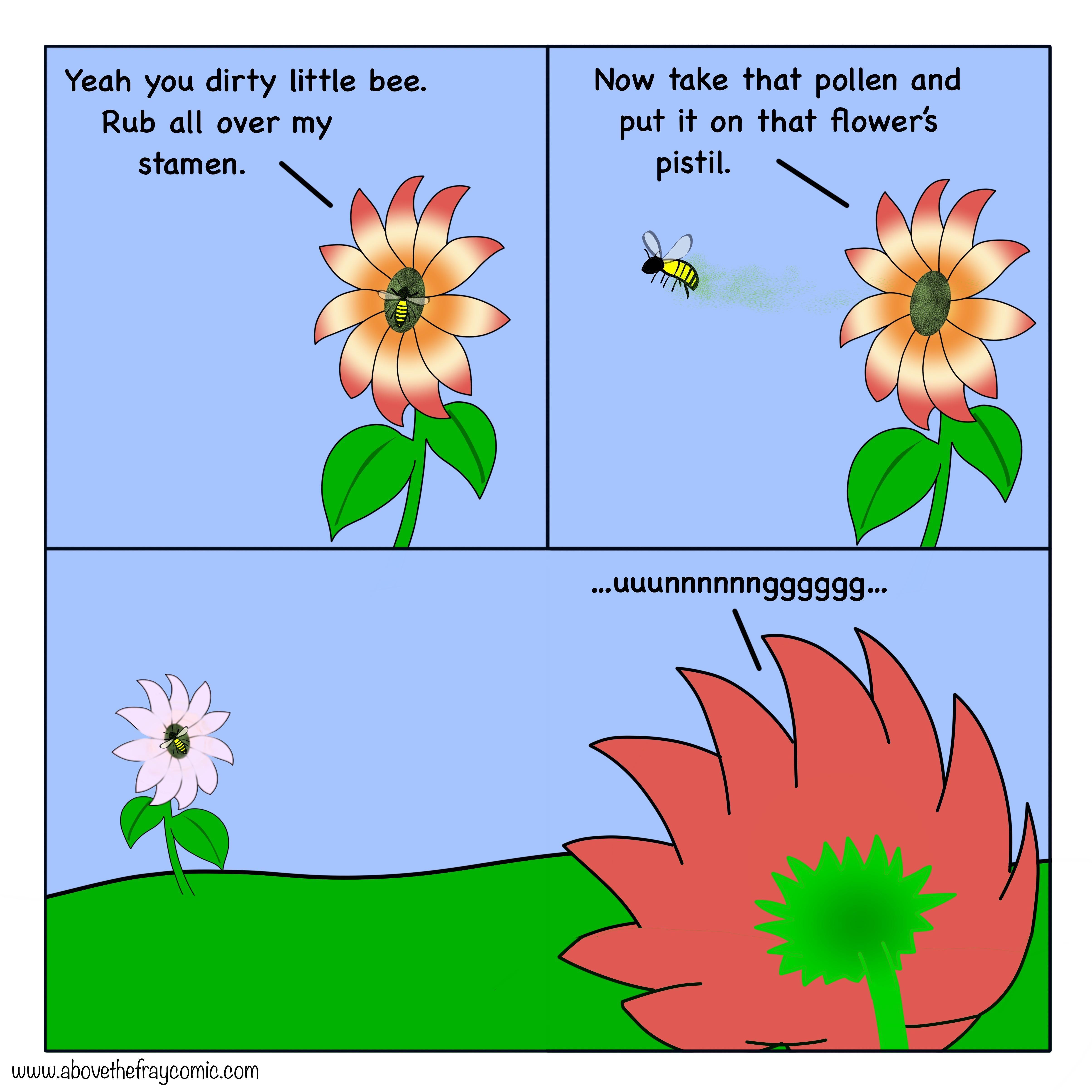 Flower sex explained