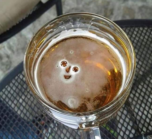 Was ready to quit alcohol.. Then I saw how happy it was to see me. How can I leave that smile!!..
