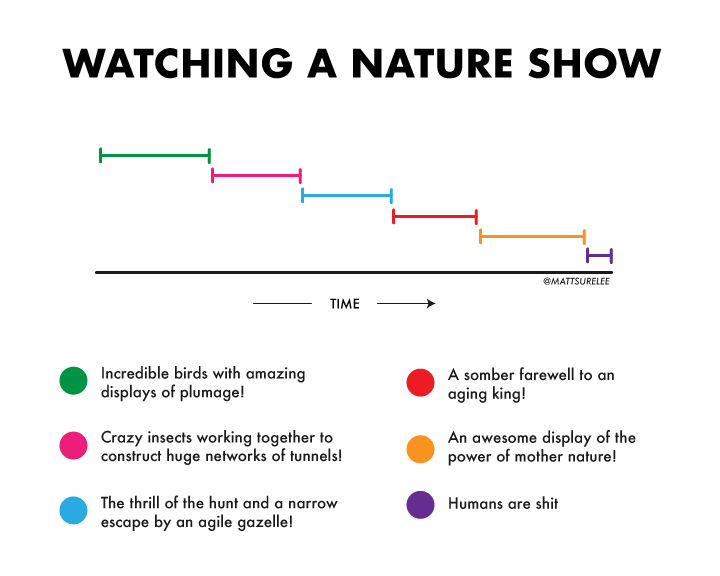 watching nature shows
