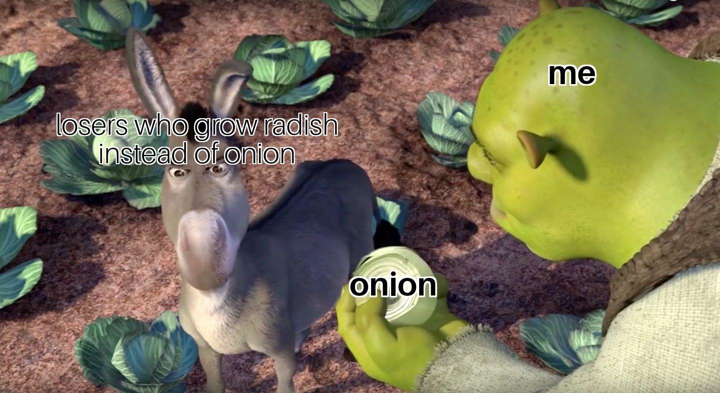 Let the war begin!