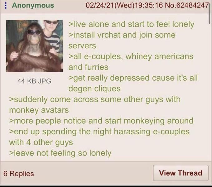 Anon partakes in a random chimp event