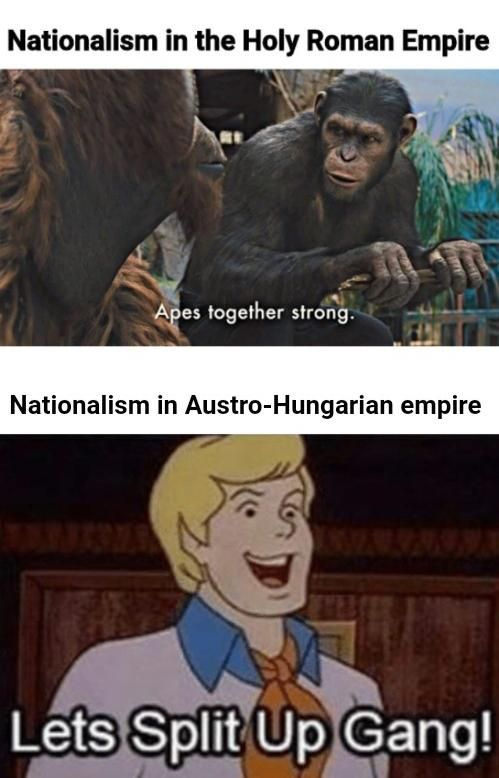 Wtf Napoleon?