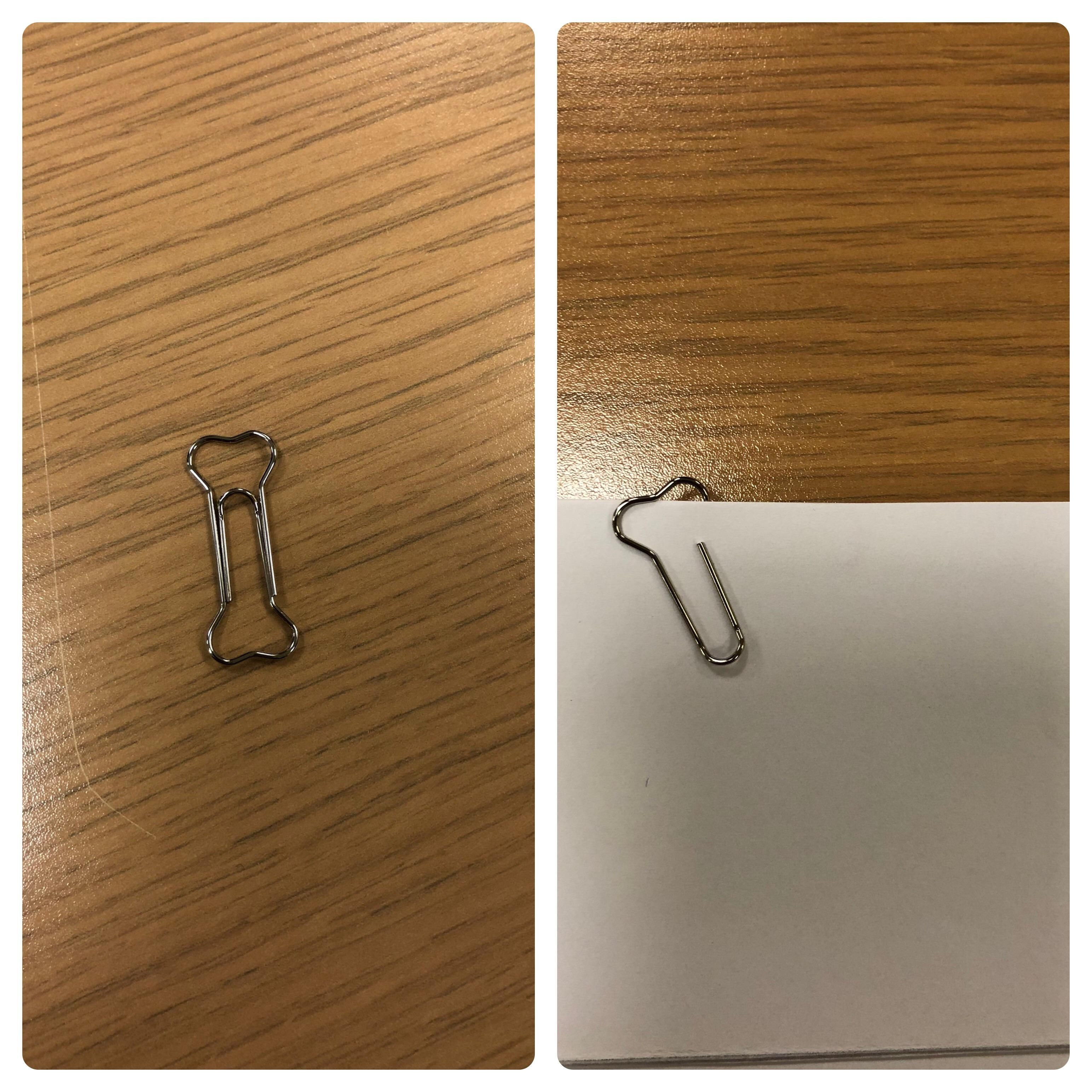 Client bought paper clips shaped like dog bones