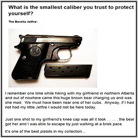 Thinking about getting a small caliber pistol?