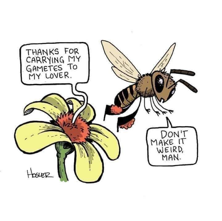 Funny science....pollination