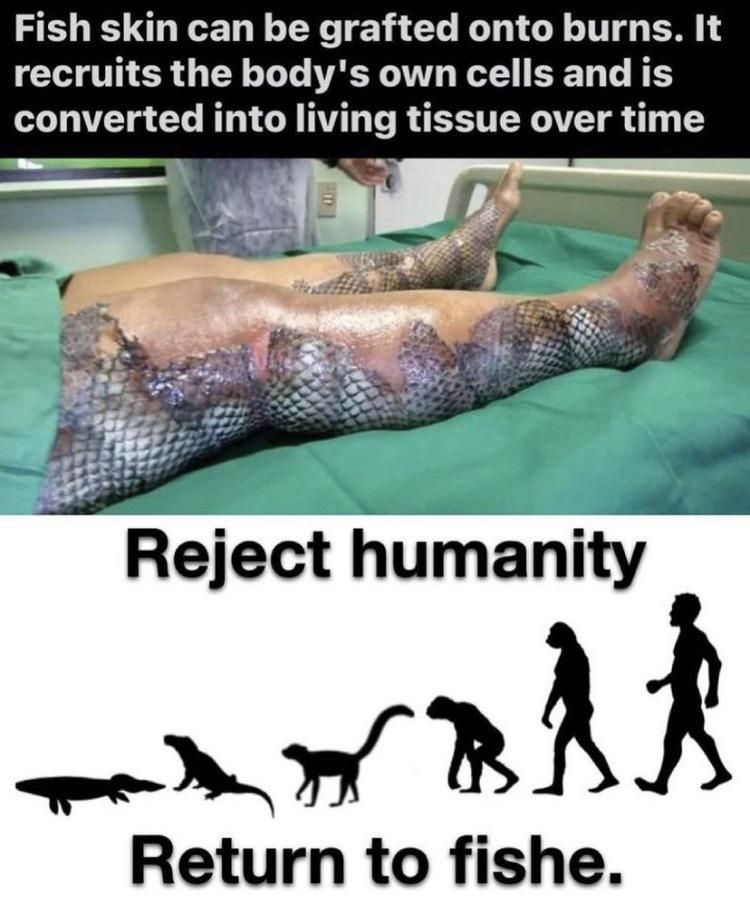 Rejecting humanity 101
