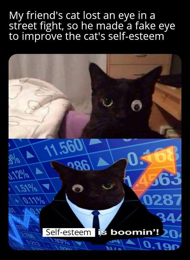 "Cat ""mad-eye"" Moody"
