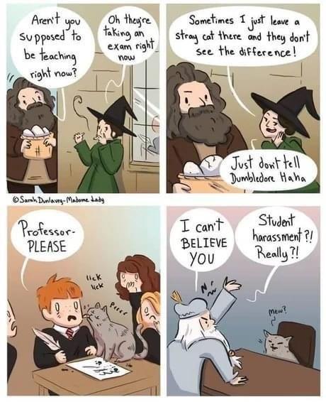 made me laugh!!!!