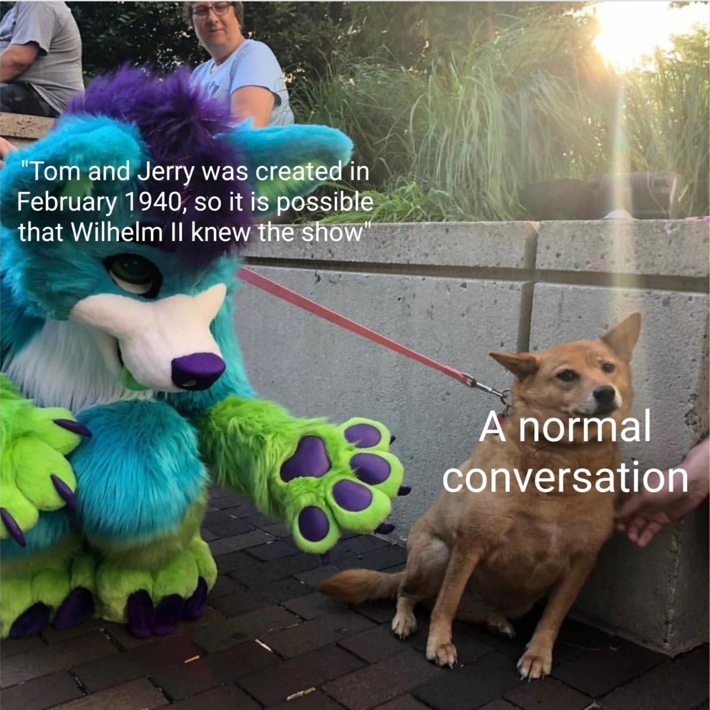 Wilhelm II might knew about it