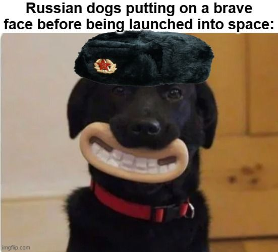 Stay calm, comrade. You'll get a statue, it's all good!