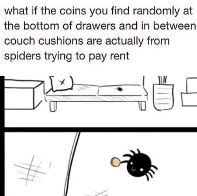 be nice to your spiderbros