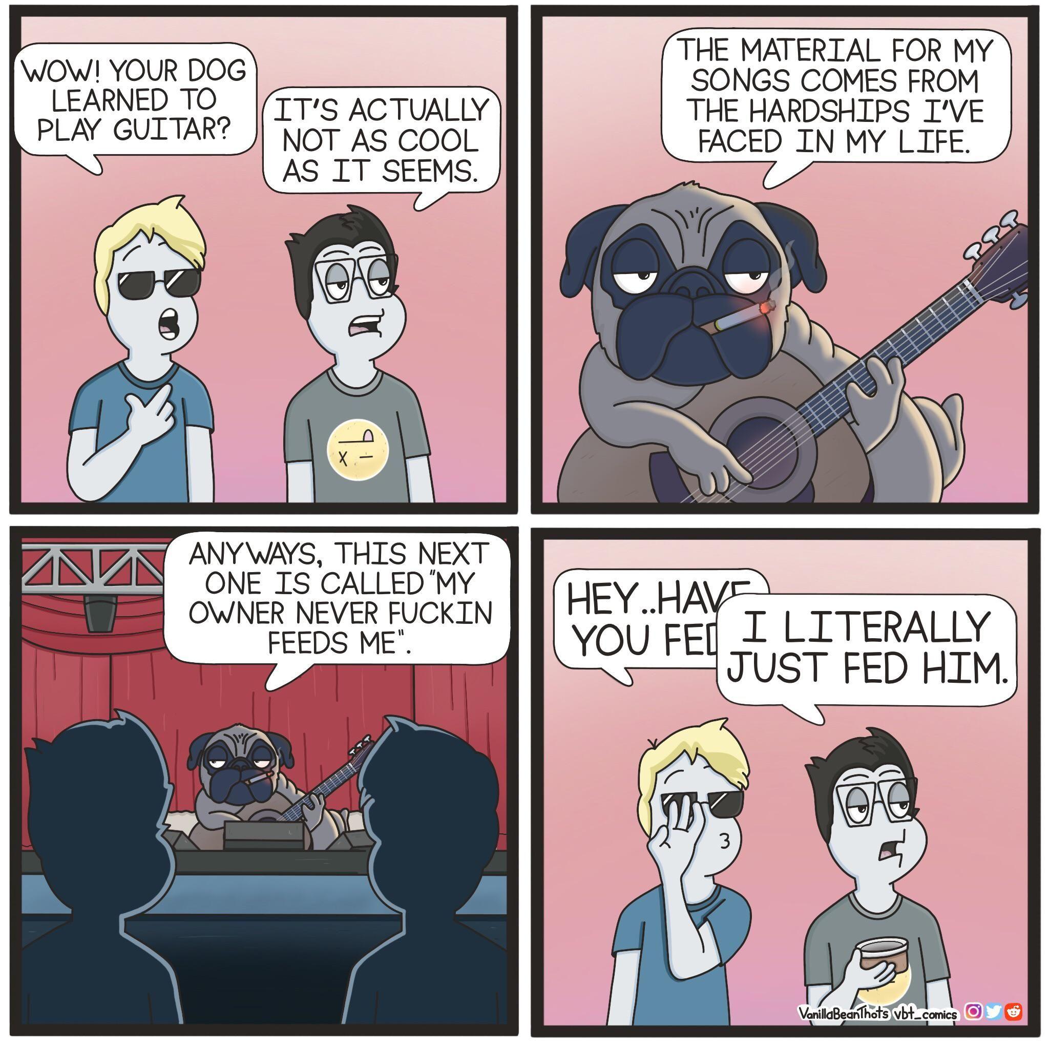 Bones, Pugs, and Harmony