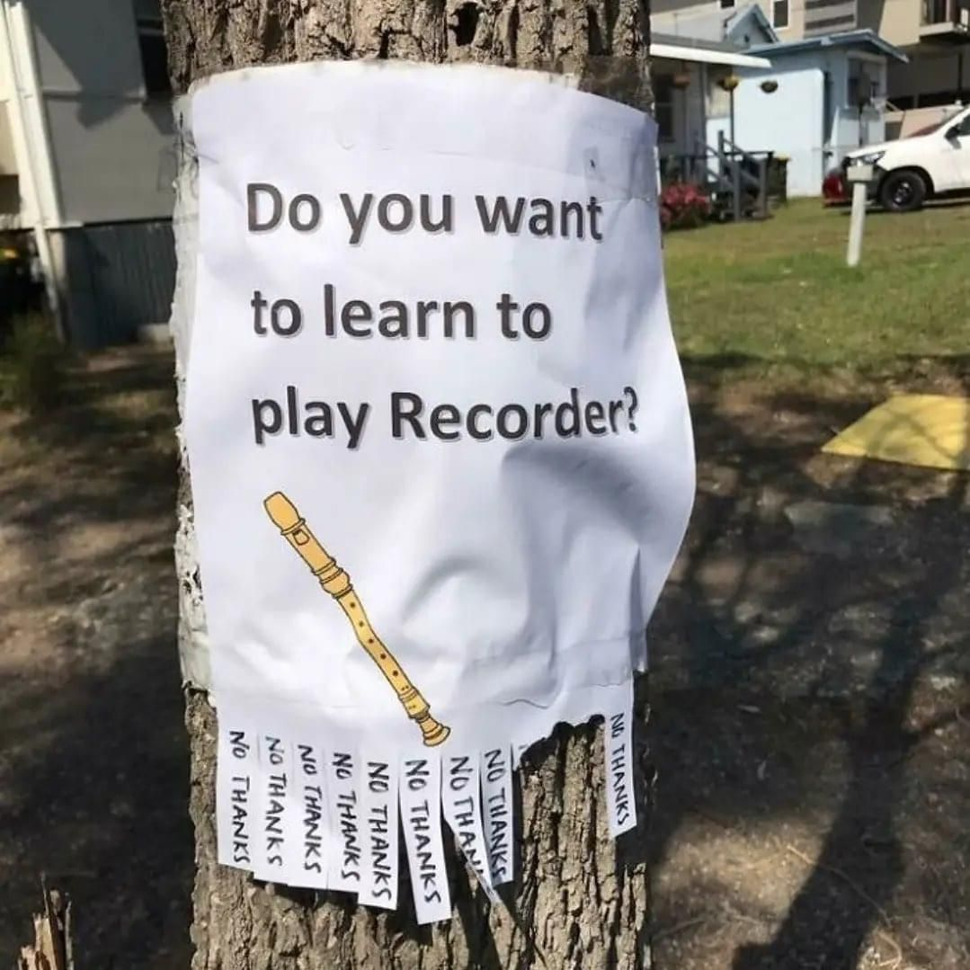 Do you want to learn to play Recorder?