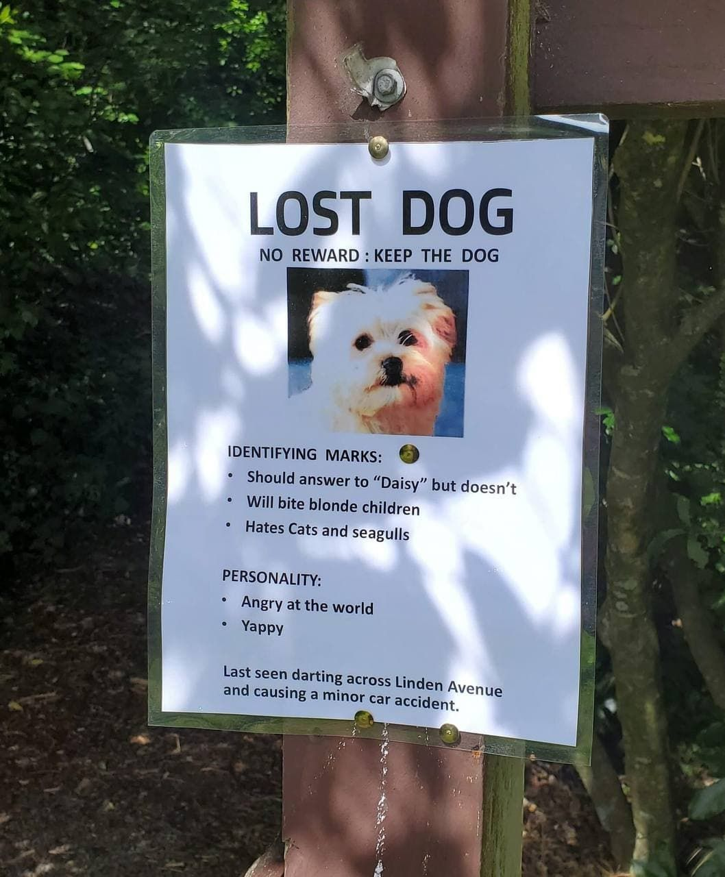Friend of mine saw this posted up around her neighborhood